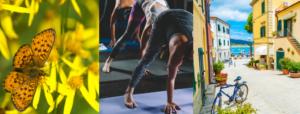 Iyengar Yoga Classes @ Jackson's Lane @ Jackson's Lane Studio 2